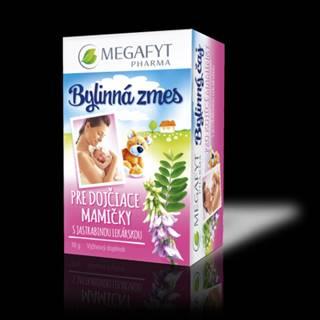 MEGAFYT Bylinný čaj pre dojčiace mamičky 20 x 1,5 g
