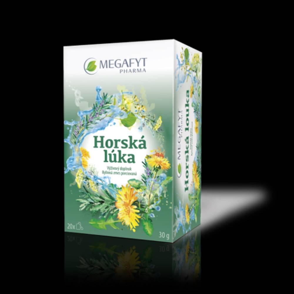 Megafyt MEGAFYT Horská lúka 20 x 1,5 g