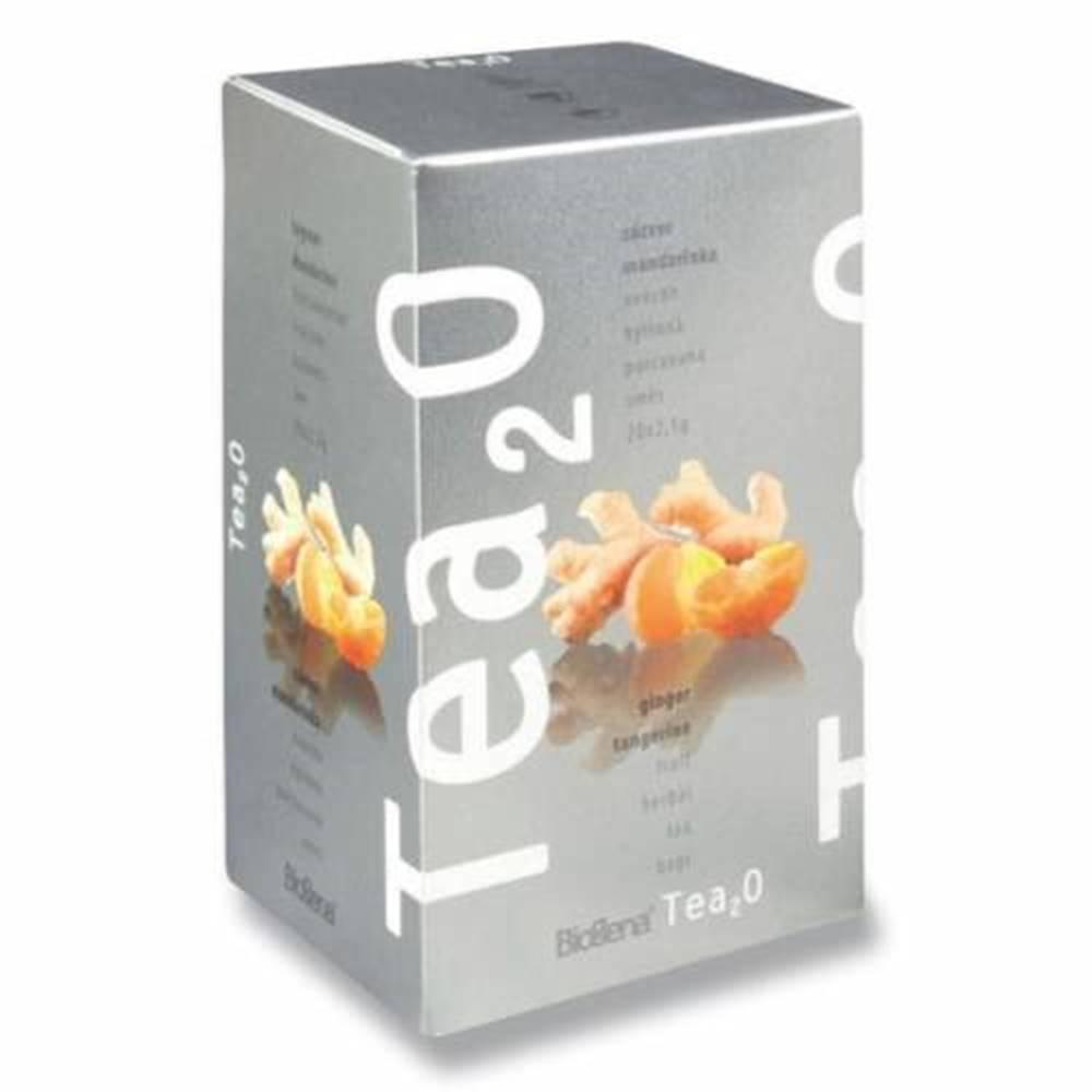 BIOGENA BIOGENA Tea2O zázvor & mandarínka 20 x 2,5 g