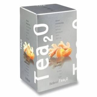 BIOGENA Tea2O zázvor & mandarínka 20 x 2,5 g