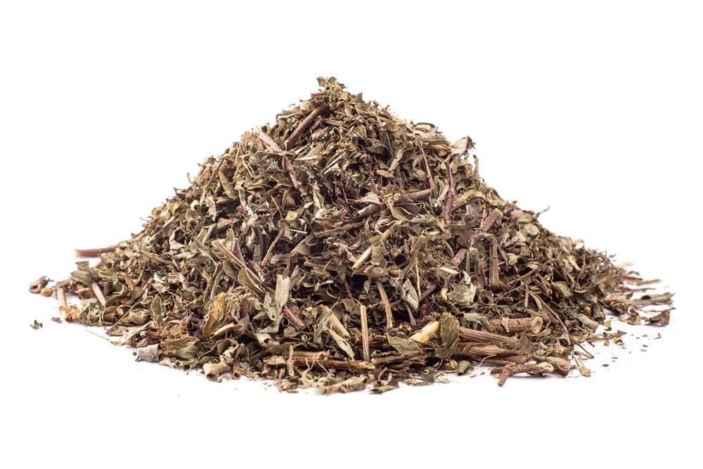Manu tea CHANCA PIEDRA ( Phyllantus niruri linn )  - bylina, 10g