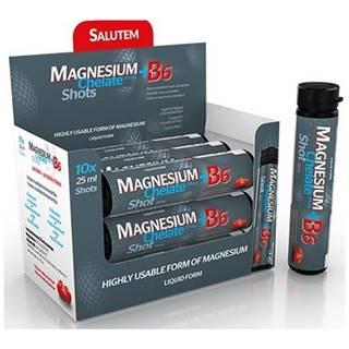 Salutem Magnesium chelate + B6 cherry ampulky 10x25 ml