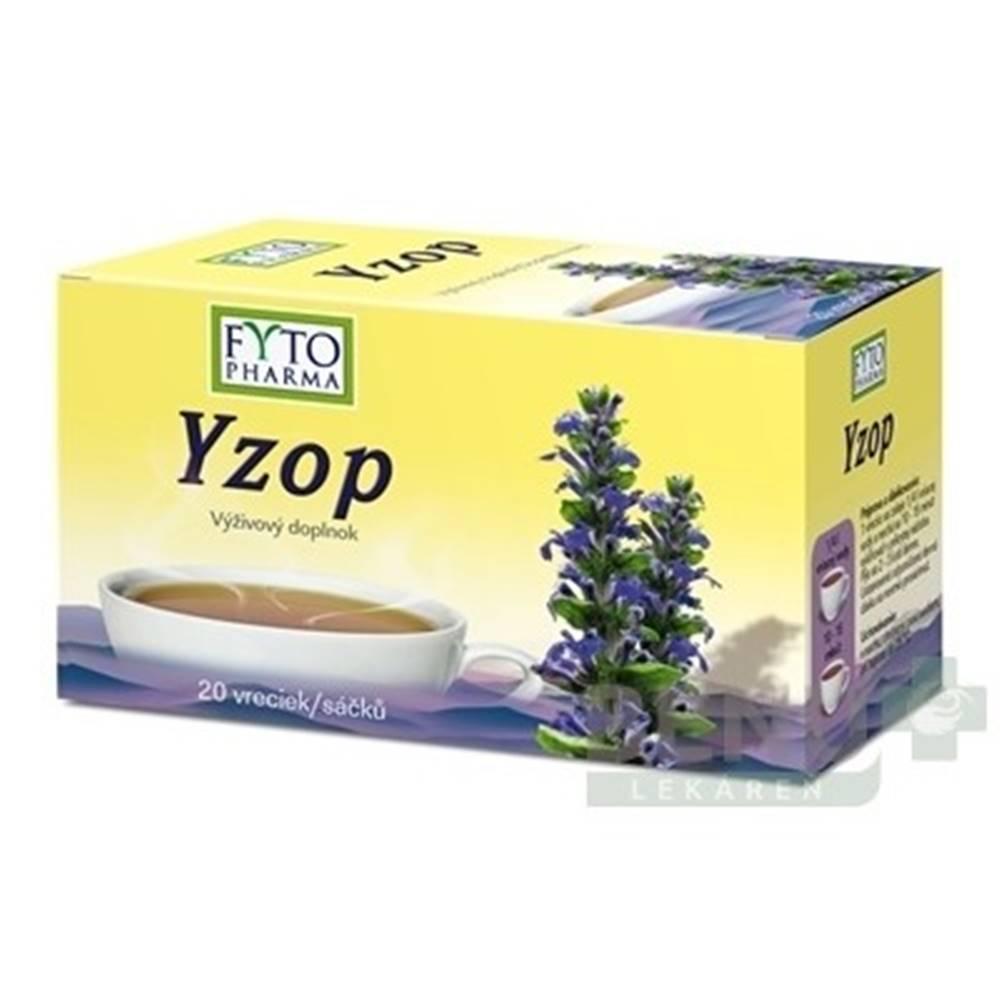 FYTO FYTO Yzop 20x1,5g