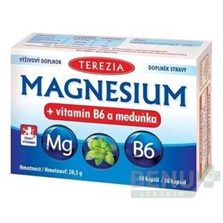 TEREZIA Magnezium + vitamín B6 a medovka 30 kapsúl