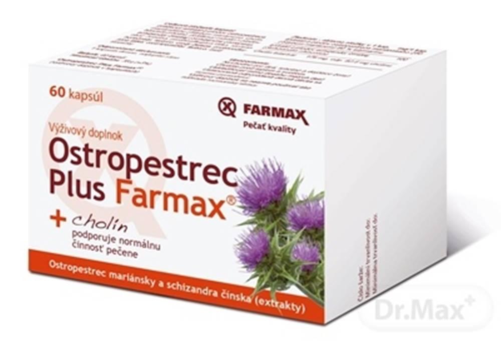 FARMAX Ostropestrec Plus Farmax