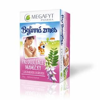 MEGAFYT Bylinný čaj PRE DOJČ. MAMIČKY s jastrabinou 20x1,5 g (30 g)