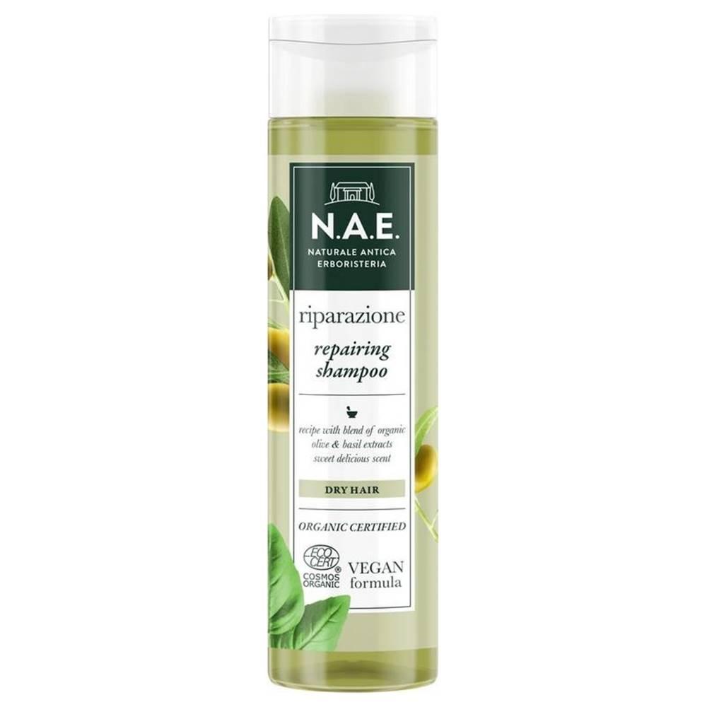 N.A.E. N.a.e. šampón riparazione   cosmorg